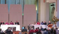 fossil fuel divestment motion presented 2013