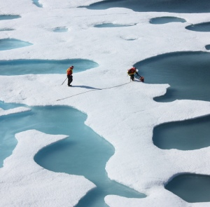 scientists retrieve canister on NASA sea ice mission