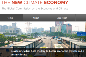The New Climate Economy website