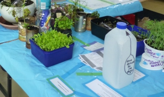 World Environment Day display at St Peter's Pakuranga.