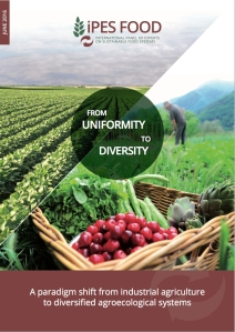 From Uniformity to Diversity