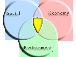 Traditional-Sustainability